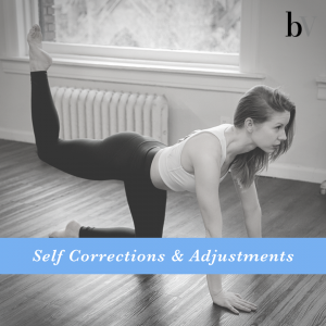 Self Corrections & Adjustments Course image